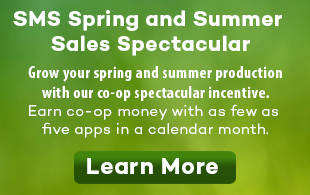 SMS Spring and Summer Spectacular